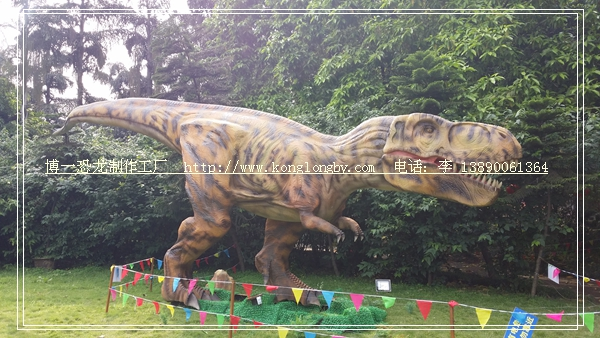 博一恐龙展出供应:8米霸王龙实物照片