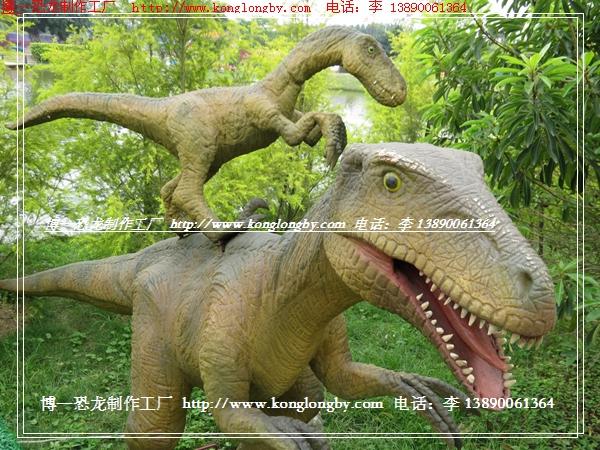 恐龙出租现场专业图片展示