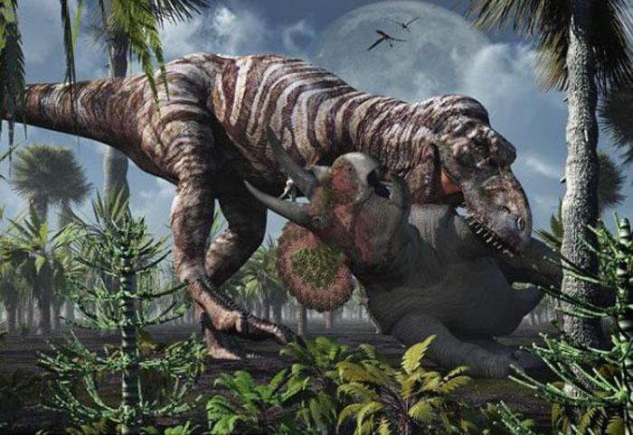 机械恐龙,恐龙化石,恐龙骨架,仿真动物,恐龙游乐车,坐骑恐龙,恐龙